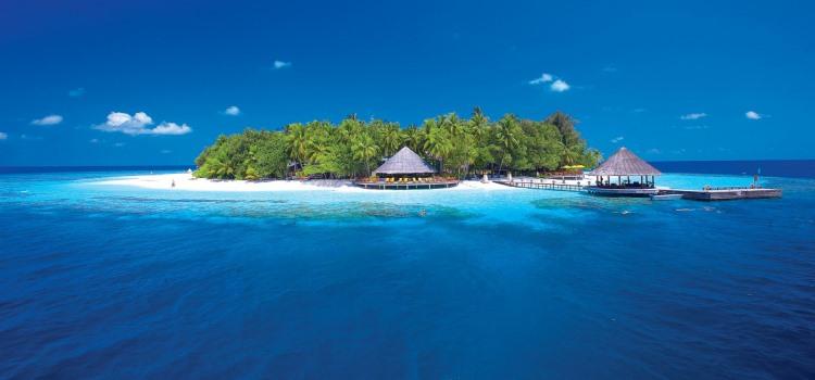okean-ostrov-palmy-bungalo